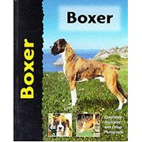 Boxer - Pet Love