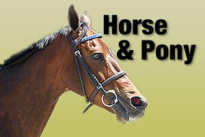 Horse and pony products and supplies
